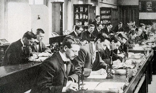 students working in pathology lab 1900